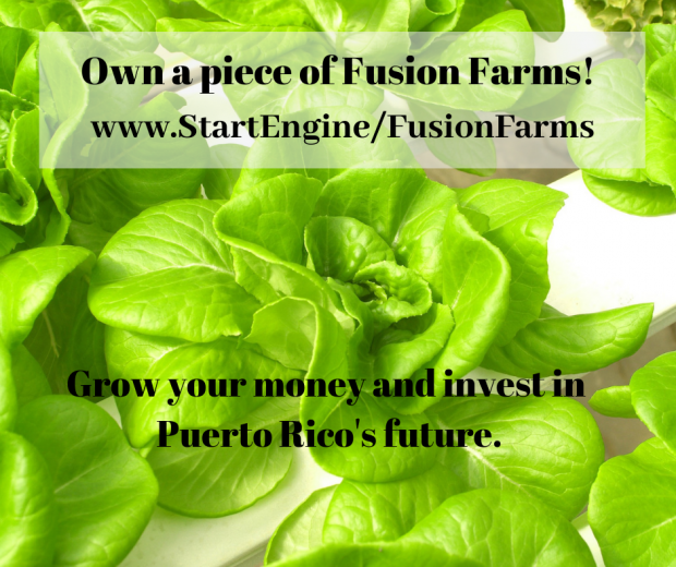 Invest In Aquaponics Business of Fusion Farms Hurricane Protected Farm